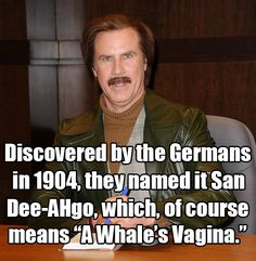 Ron Burgundy in Anchorman: The Legend of Ron Burgundy
