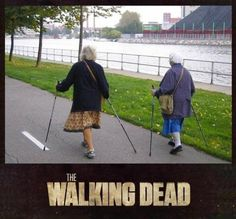 http://2muchgags.com/2016/01/06/the-walking-dead/