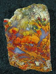 a chunk of flowergarden agate found at Sierra del Tonto in 2007.