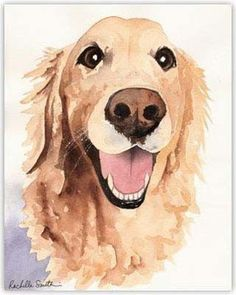 Golden Retriever water color paintings - Google Search