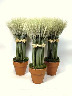 dried floral, potted wheat sheaves $22.00 #wheatsheaves #wheatsheaf #wheat