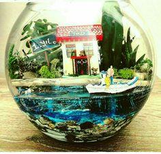 Love this terrarium Terrarium Scene, Water Terrarium, Mini Terrarium, Terrarium Plants, Succulent Terrarium, Mini Bonsai, Paludarium, Gnome Garden, Miniature Fairy Gardens