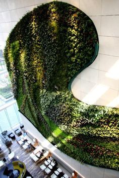 In Kowloon in Hong Kong, Hotel Icon houses Asia's largest indoor vertical garden within its lobby. French botanist and artist Patrick Blanc designed the feature, which measures 18 metres in height and covers 230 square metres. Consisting of numerous native plants, the vertical garden functions as a welcome natural sight within the congested city centre.