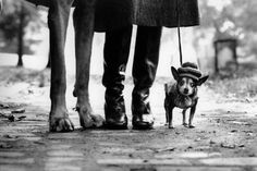Another quirky photo by Elliot Erwitt, what an amazing photographer.