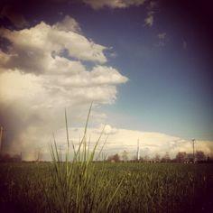 Landscape ...