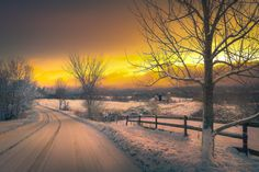 Wintry Country Road   Discovered from Dream Afar New Tab