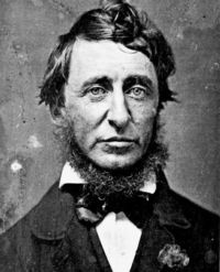 """""""As a single footstep will not make a path on the earth, so a single thought will not make a pathway in the mind. To make a deep physical path, we walk again and again. To make a deep mental path, we must think over and over the kind of thoughts we wish to dominate our lives."""" ― Henry David Thoreau"""