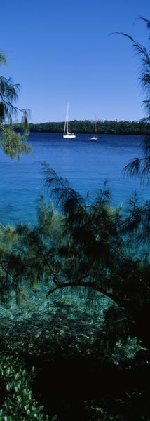 Sailboats in the ocean, Kingdom of Tonga, Vava'u Group of Islands, South Pacific.