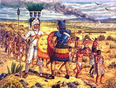 Historical Armies Illustrated - The Aztec Empire & Contemporaries Mexican Army, Aztec Empire, Ancient Aztecs, Aztec Culture, Aztec Warrior, Aztec Art, Conquistador, Military Art, Military History