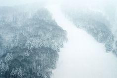 japanese winter - Blog | edholmullenius.se