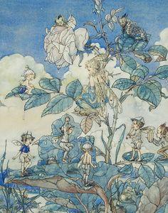 Bluebells and Stars: Harold Gaze Fairys Fairy Paintings, Fantasy Paintings, Fantasy Art, Fairy Games, The Magic Faraway Tree, Vintage Fairies, Fairytale Art, Beautiful Fairies, Flower Fairies