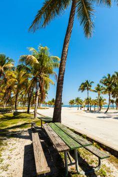 #CrandonParkBeach, una de las mejores opciones de playa que brinda el sur de la #Florida. Se encuentra en la ciudad de #Miami.  http://www.bestday.com.mx/Miami-area-Florida/ReservaHoteles/