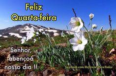 Bom dia! Quarta-feira abençoada Acesse a linda mensagem de Paulo Coelho e outras em nosso blog.