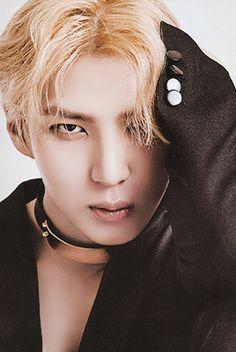 Jung Taekwoon, leo, vixx Jung Taekwoon, Jellyfish Entertainment, Vixx, South Korean Boy Band, Boy Bands, Leo, Lion