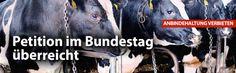 Petition im Bundestag überreicht