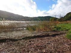 The lake at Llyn Gwy