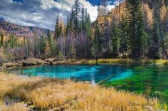 Голубое озеро. Горный Алтай #отпуск #отдых #туристическийжурнал
