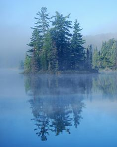 Algonquin Park - Early Morning. Where I spent one week canoeing for college credit.