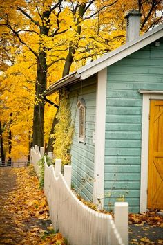 Heir and Space: Color Crush: Mustard Yellow
