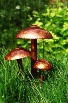 These charming toadstools are sure to attract the Fairies into your garden.  }l{