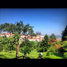 """Overlooking Prague and the Prague Castle"" Student Photo in the Czech Republic"