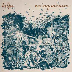 kelpe - ex-aquarium