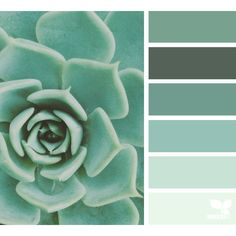 A Door Tones ❤ liked on Polyvore featuring backgrounds and design seeds