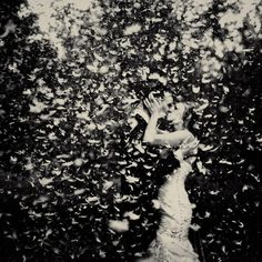 inspiration | feather toss as the bride and groom kiss | via: crisp me