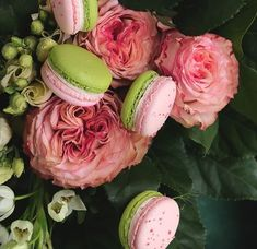 Rhabarber-Rosen Macarons