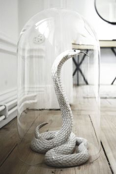 Glass Cloche, rubber snake, wire and spray paint. ♕BOUTIQUE CHIC♕