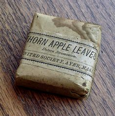 "Small sachet packet, ""THORN APPLE LEAVES . . . United Society, Ayer, Mass."""