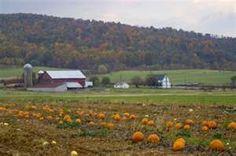 farm in Frederick, Maryland