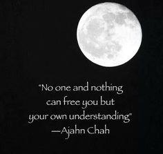 Ajahn Chah #AjahnChah  #Quotes
