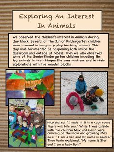 Exploring An Interest In Animals This post reflects the children's interest in animals. Science Inquiry, Inquiry Based Learning, Project Based Learning, Learning Centers, Early Learning, Early Childhood Activities, Childhood Education, Reggio Children, Children Play