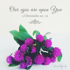 Cecilpink: Our Eyes Are Upon You