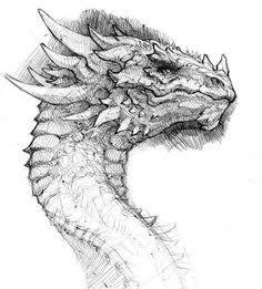 Эскиз татуировки с драконом