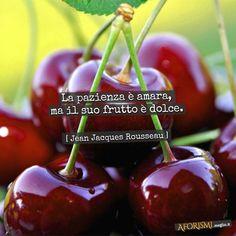 Jean-Jacques Rousseau • La pazienza è amara, ma il suo frutto è dolce.