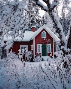 Little red cottage in the snow ❄️ Nyköping 🌲 via Scandinavian Cottage, Swedish Cottage, Red Cottage, Cozy Cottage, Woodlands Cottage, The Snow, Sweden House, Houses In Sweden, Red Houses