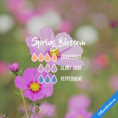 Spring Blossom - Essential Oil Diffuser Blend
