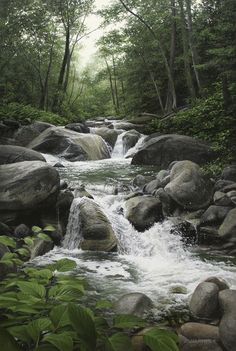AFTER JUNE RAIN, 30×20  (sold)