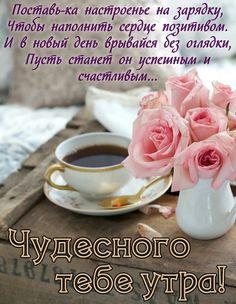 Good Morning, Tea Cups, Tableware, Montreal, Garden, Bonjour, Buen Dia, Dinnerware, Garten