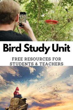 Bird Study Unit Free Resources for Teachers and Students mosswoodconnections science animalscience education homeschooling birdstudyunit 300263500158132640 Animal Science, Science Biology, Teaching Biology, Earth Science, Life Science, Science And Nature, Forensic Science, Science Art, Computer Science