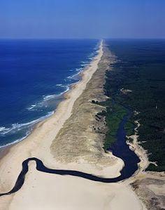 Landes: South-west France on the Atlantic coast.