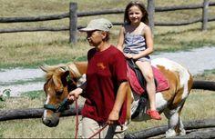 Kindergeburtstag auf Schloss Hof auf sunny.at Horses, Animals, Animales, Animaux, Animal, Animais, Horse