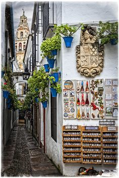 Quaint little street in Cordoba, Spain