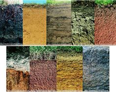 Soil type types of and search on pinterest for Different kinds of soil and their uses