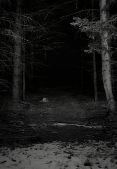 into the darkness. Excellent story prompt.  Something is just waiting here to happen and it could be something very unfortunate.