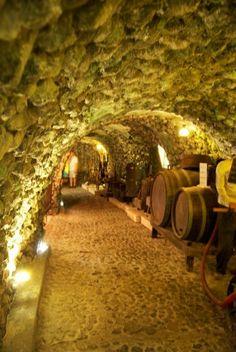 Santorini wine cellars, Italy