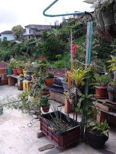 Mi terraza