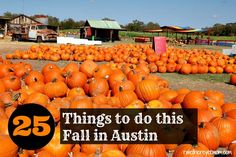 Things to Do in Austin this Fall - Activities and Events happening in Austin and Central Texas Fall 2017 - football, pumpkin patches, musicals, outdoors fun
